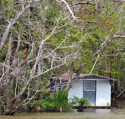 Photograph - A Cozy Spot On The Apalachicola River by Carla Parris