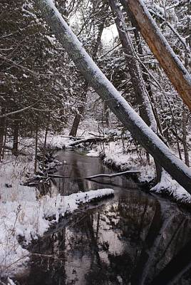 On Trend At The Pool - A Creek Runs Through It - 2 by Holly Eads