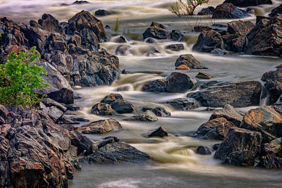 Photograph - A Creek To The Side by Rick Berk