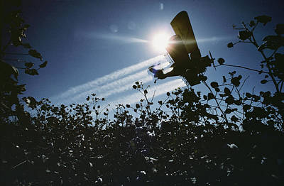 Cotton Field Photograph - A Crop Duster Spraying A Cotton Field by Kenneth Garrett
