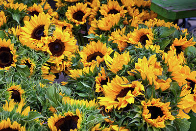 Art Print featuring the photograph A Crowd Of Sunflowers by Susan Cole Kelly
