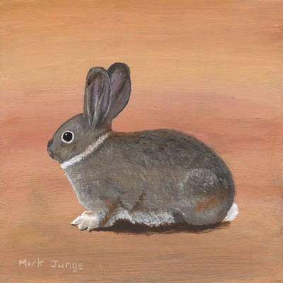 Wall Art - Painting - A Cute Fur Ball by Mark Junge