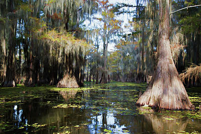 Photograph - A Cypress Swamp by Lana Trussell
