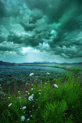Photograph - A Dark Day by Phil Koch