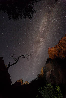 Photograph - A Dark Night In Zion Canyon by David Watkins
