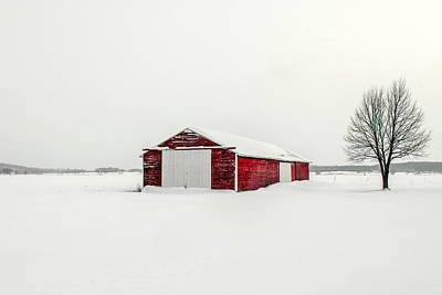 Photograph - A Darker Kind Of Red by Todd Klassy