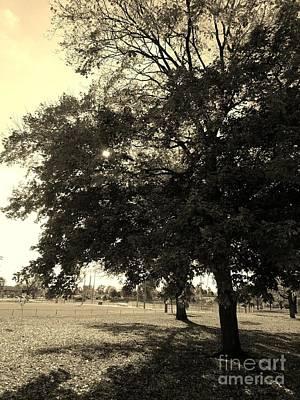 Indiana Winters Digital Art - A Day At The Park - Sepia by Scott D Van Osdol