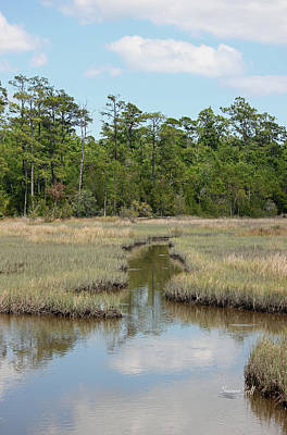Croatan Photograph - A Day At The Salt Marsh by Suzanne Gaff