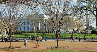 Photograph - A Day At The White House by Cora Wandel