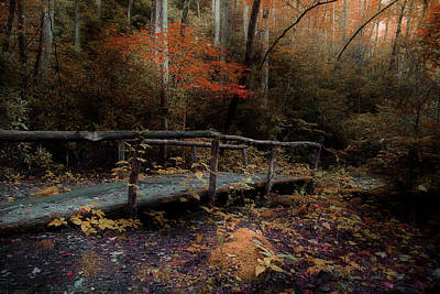 Photograph - A Day Hiking by Mike Eingle
