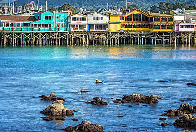 Photograph - A Day In The Bay by Lynn Bauer
