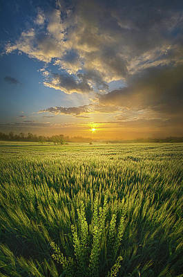 Unity Photograph - A Day In The Life by Phil Koch