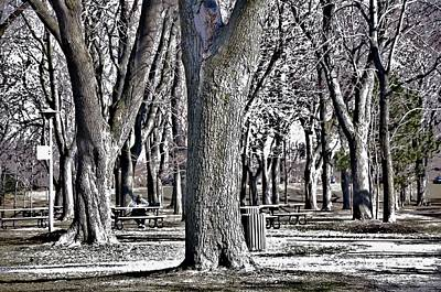A Day In The Park Print by Reb Frost