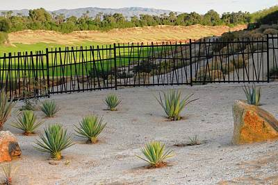 Photograph - A Desert Scene Across The Arroyo by Kirsten Giving