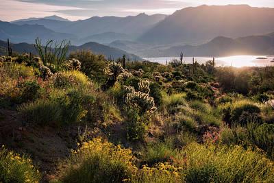 Photograph - A Desert Spring Morning  by Saija Lehtonen