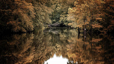 Photograph - A Different Perspective by Van Sutherland