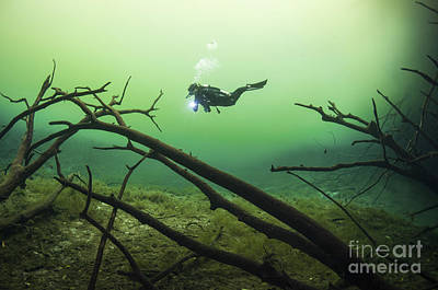 Cenote Photograph - A Diver In The Car Wash Cenote System by Karen Doody