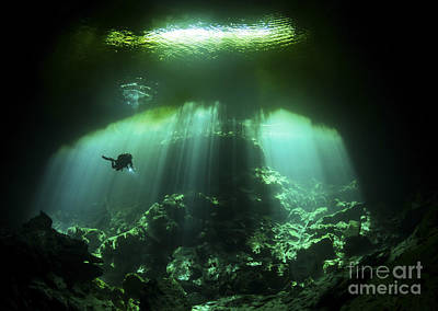 Cenote Photograph - A Diver In The Garden Of Eden Cenote by Karen Doody
