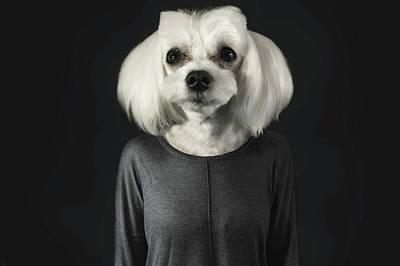 Human Head Mixed Media - A Dog's Life by Aytugul Turk