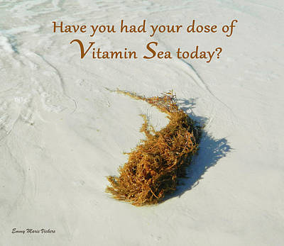 Photograph - A Dose Of Vitamin Sea2 by Emmy Marie Vickers