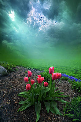 Unity Photograph - A Dream For You by Phil Koch