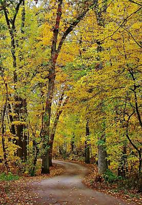 Photograph - A Drive Through The Park by Bruce Bley