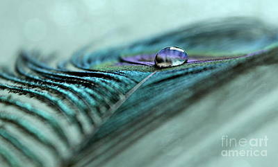 Photograph - A Drop Of Purity by Krissy Katsimbras