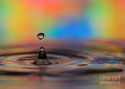 Photograph - A Drop by Sabrina L Ryan