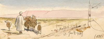 Drawing - A Dry Halfeh Grass by Edward Lear