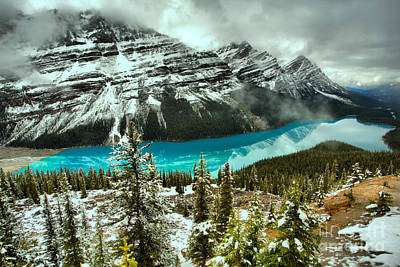 Photograph - A Dusting Of Spring Snow At Peyto by Adam Jewell