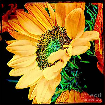 Photograph - A Face To The Sun - Sunflower Up Close by Miriam Danar