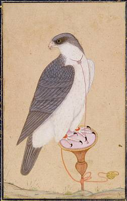 Falcon Painting - A Falcon On A Perch by Eastern Accents