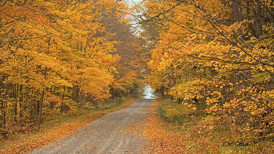 Photograph - A Fall Drive by CR Courson
