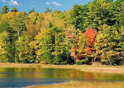 A Fall Pond   Art Print