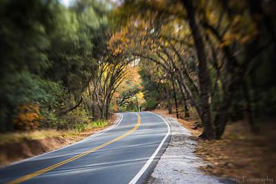 A Fall Roadway Art Print