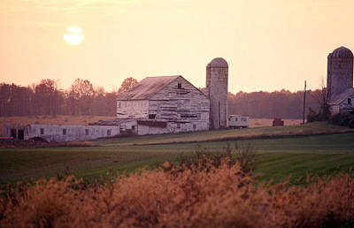 A Farm In Rockville, Maryland Print by Richard Nowitz