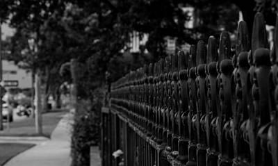 Photograph - A Fence In Beaufort by John Harding