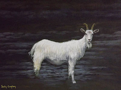 Burren Painting - A Feral Goat On The Burren by Sean Conlon