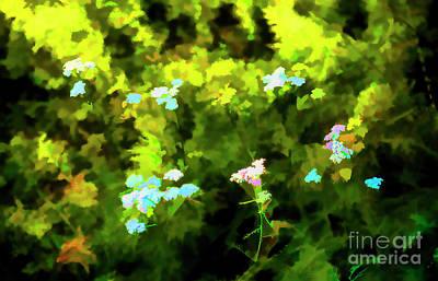 Photograph - A Few Flowers by Rick Bragan
