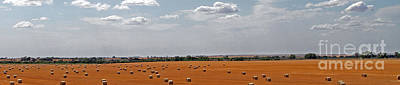 Photograph - A Field Of Bales by Betty Morgan