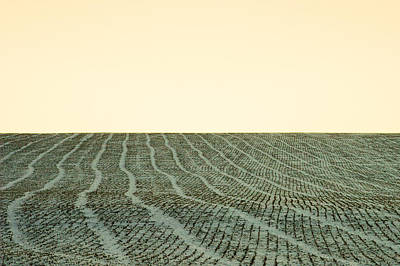 A Field Stitched Art Print