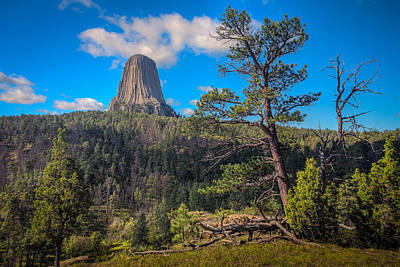 Photograph - A Fine Summer's Day At Devil's Tower by Rikk Flohr