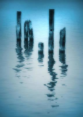 Photograph - A Fleeting Blue by Tara Turner