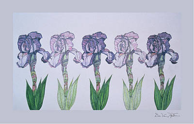 Painting - A Floral Line by Dee Van Houten
