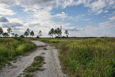 Photograph - A Florida Ghost Town - Brewster Florida by John Black