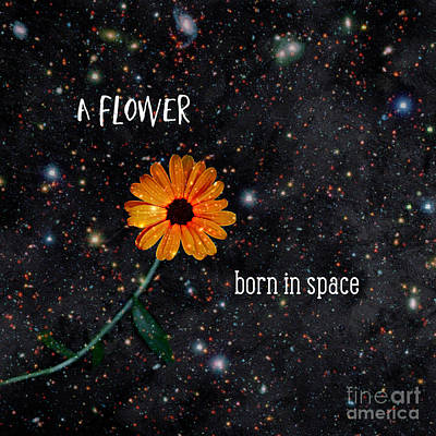 Photograph - A Flower Born In Space by Renee Trenholm