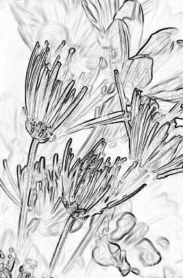 Pen And Ink Drawing Photograph - A Flower Sketch by Julie Lueders