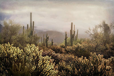 Photograph - A Foggy Dawn In The Desert  by Saija Lehtonen