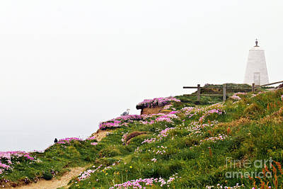 Photograph - A Foggy Day At Lighthouse Hill Portreath by Terri Waters