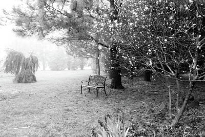 Photograph - A Foggy Spring Morning In Black And White by Trina Ansel